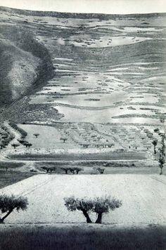 landscape in Castile, Spain, 1950s photo by Henri Cartier-Bresson