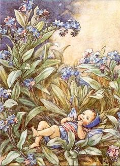 Cicely Mary Barker by zelma