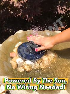Give your backyard a touch of nature with the Solar-Powered Bird Fountain Kit, instantly turning any body of water into a relaxing birdbath, it requires no wiring and is powered completely off the sun! Great for attracting birds, it makes a great feature in any pool, backyard, fish tank, pond or existing birdbath.