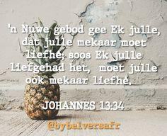'n Nuwe gebod gee Ek julle Afrikaans, How To Dry Basil, Bible, Herbs, Wisdom, Quotes, Biblia, Quotations, Herb