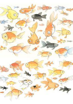 Goldfish Caricaturas
