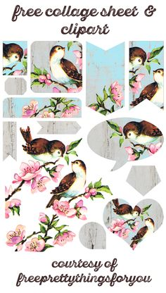 Free-collage-sheet-vintage-birds-FPTFY-1