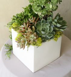 Our group flower workshops are a fun filled event that can be customized around a special event such as a bridal shower, baby shower, or couples night. Bridal Shower, Baby Shower, Night Couple, Succulent Terrarium, Create Your Own, Succulents, Workshop, Group, Heart