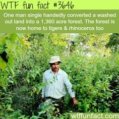 How a man created a whole forest by himself -  WTF fun facts