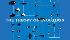 KURZGESAGT: THE THEORY OF EVOLUTION