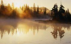 утро, рассвет, туман, лес, вода, озеро