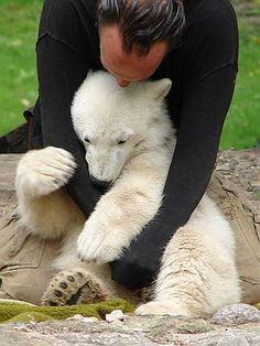 Eisbär Knut mit seinem Ziehvater Thomas Dörflein am 31. Mai 2007 im Zoologischen Garten Berlin - Foto: Jean-Luc 2005