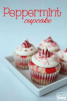 Among the Young: Peppermint Cupcakes:Peppermint Cupcakes 1 box white cake mix 1 tsp peppermint extract drops of red food coloring Hershey's Peppermint Kisses Köstliche Desserts, Holiday Desserts, Holiday Baking, Christmas Baking, Holiday Recipes, Delicious Desserts, Holiday Foods, Cupcake Recipes, Cupcake Cakes