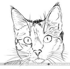 cat clip art   cat face drawing - public domain clip art image @ wpclipart.com