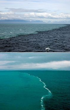 Where the Baltic Sea and the North Sea meet