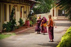 Young Tibetan Monks Namdroling Monastery