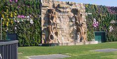 El jardín vertical más grande del mundo  Ha sido inaugurada en la ciudad de Milán (Italia) esta enorme pared vegetal, la más grande del mundo por su tamaño.  Esta situada en las paredes exteriores del centro comercial Il Fiordaliso y tiene 1.263 metros cuadrados.  Ha sido diseñada por el arquitecto italiano Francesco Bollani.  Para su composición se han utilizado más de 44.000 plantas.