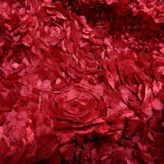 Cut Flowers Red