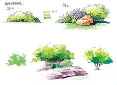 园林景观手绘马克笔色彩表现 Landscape Architecture Drawing, Landscape Sketch, Pen And Wash, Building Sketch, Hand Sketch, Plant Art, Plant Illustration, Pencil Art Drawings, Green Art