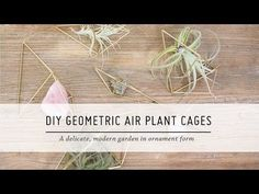 DIY Hanging Geometric Cage (or Hanging Air Plant Holder) Mr Kate Youtube, Diy Art, Plant Cages, Hanging Air Plants, Geometric Decor, Garden Ornaments, Diy Room Decor, Home Decor, Decoration