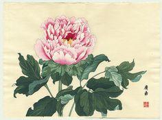 First Edition Peony by Tanigami Konan (1879 - 1928)