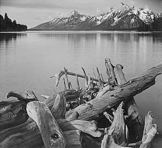 Global Gallery 'Driftwood on Shore of Jackson Lake, with Teton Range in Background, Grand Teton National Park, Wyoming, by Ansel Adams Framed Photographic Print on Canvas Carlsbad Caverns National Park, Grand Teton National Park, Yosemite National Park, Edward Weston, Wyoming, Sierra Nevada, Ansel Adams Photos, Ansel Adams Photography, Ethereal Photography