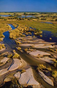 Low water in the Okavango Delta (aerial), Botswana, Frans Lanting