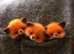 Cute Wild Animals, Cute Kawaii Animals, Baby Animals Super Cute, Cute Animal Drawings Kawaii, Cute Baby Dogs, Baby Animals Pictures, Cute Cartoon Animals, Cute Stuffed Animals, Cute Little Animals