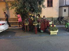 Tropea,Calabria Italy A beautiful city a beautiful County