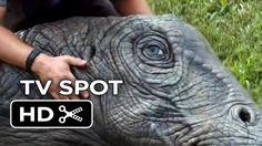 Jurassic World Extended TV Spot - Run (2015) - Chris Pratt Movie HD Jurassic World 4, Jurassic Park, Chris Pratt Movies, Elephant, Tv, Trees, Television Set, Tree Structure, Elephants