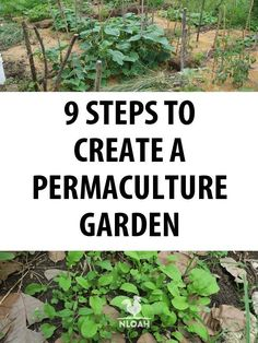 Gardening For Beginners Take these 9 steps to create a permaculture garden. - Permaculture is a toolbox of techniques aimed at regenerating the Earth and the society in which we live. However, many people see permaculture as an Permaculture Design, Permaculture Garden, Permaculture Principles, Home Vegetable Garden, Organic Gardening Tips, Organic Compost, Garden Pests, Plantar, Organic Vegetables