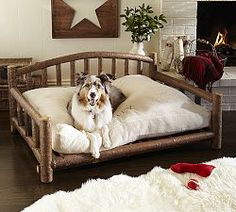 Pet Supplies & Accessories | Pottery Barn