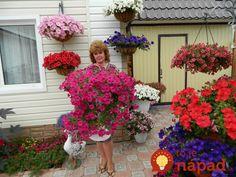 Archívy Dom & záhrada - Page 18 of 269 - To je nápad! Container Gardening, Aloe Vera, Outdoor Spaces, Floral Wreath, Wreaths, Plants, Women's Fashion, Decor, Balcony