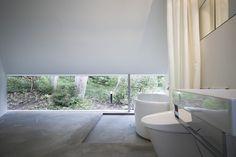 Vista esclusiva per la Forest Bath a Nagano