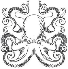 Nauticus - Octopus_image