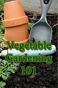 Vegetable Garden Planning Basics... no regrets this year :-) I am getting a head start and planning now!