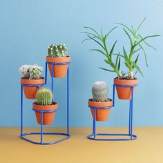 / STEP up your plant game with these playful + modern plant stands by Washington, DC based designer His Ministep and Minispiral plant stands are a terrific way to green your desk, windowsill or kitchen island. — Justin Donnelly's Bez Metal Plant Stand, Modern Plant Stand, Diy Plant Stand, Plant Stands, House Plants Decor, Plant Decor, Iron Furniture, Modern Planters, Window Boxes