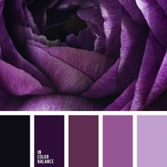 The fascinating palette. Rich, deep paint look rich and expensive. Dark purple, the color of rotten cherries and black are magical, magical combination. The predominance of colors characteristic of the interior in the style of noir - luxurious and pompous. Lighter shades of purple and dark pink to create a spectacular contrast.
