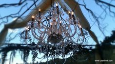 Custom Weddings | Event Masters Decor..This is what we are all about... YOU! Call today (801) 673-4679