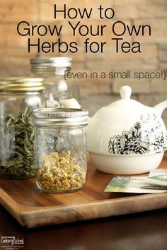 How to Grow Your Own Herbs for Tea {even in a small space} | Herbal tea is easy and rewarding to grow yourself. Many tea herbs are easy-to-grow and do well in pots and small spaces, so you can enjoy delicious home-grown tea year-round. Although you can make tea out of almost any herb, here are five (plus one more) of my favorites for both large and small gardens! | TraditionalCookingSchool.com