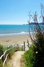 Walkway to Pohara Beach, Golden Bay, New Zealand stock photo Nelson New Zealand, Walkway, Royalty Free Images, Scenery, Stock Photos, Beach, Water, Pictures, Photography
