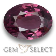 GemSelect features this natural untreated Rhodolite Garnet from Mozambique. This Red Rhodolite Garnet weighs 1.5ct and measures 7.9 x 5.9mm in size. More Oval Facet Rhodolite Garnet is available on gemselect.com #birthstones #healing #jewelrystone #loosegemstones #buygems #gemstonelover #naturalgemstone #coloredgemstones #gemstones #gem #gems #gemselect #sale #shopping #gemshopping #naturalrhodolitegarnet #rhodolitegarnet #redrhodolitegarnet #ovalgem #ovalgems #redgem #red