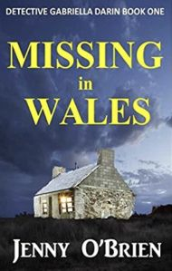 Missing in Wales by Jenny O'Brien   Novel Meals Books To Read, My Books, Men And Babies, Story Planning, Birthing Classes, Wish You Well, Cold Case, Page Turner, Book Review