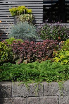 Takapihan uusi terassialue ja pergolakatos | Puutarhasuunnittelu Puksipuu