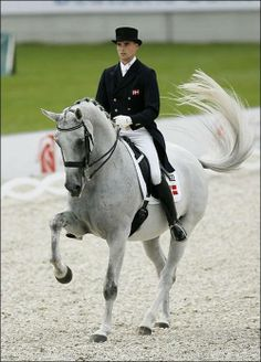 Dressage favorite - Blue Hors Matine                                                                                                                                                                                 Plus
