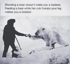 cool-polar-bear-snow-babies - LOLDAMN.com