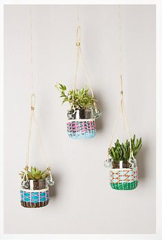 Lupine Hanging Planters http://sulia.com/my_thoughts/73602268-fc45-48ce-aa6e-4f3c4a8e3679/?source=pin&action=share&ux=mono&btn=big&form_factor=desktop&sharer_id=0&is_sharer_author=false