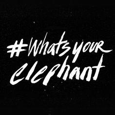 What's Your Elephant? | nikiartstudio.com