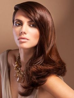 Pictures : Chocolate Brown Hair Color Ideas - Light Chocolate Brown Hair Shade