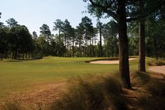 The Pearl Golf Links' East Course is a traditional layout, carved throughout the pristine forest. Calabash, NC