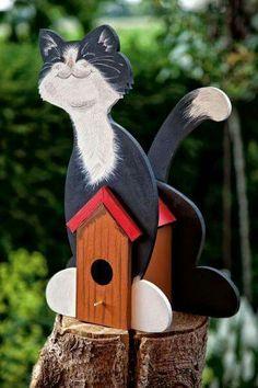 .c a t birdhouse.            t