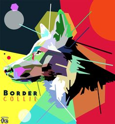 """The graphic department of FrisbeEscape FE makes very cool design. This is """"THE THOUSAND COLORS OF BORDER COLLIE"""" Enjoy with us , let the fun begin ! #FE is :  - Discs for Dogs - Vault Vest - Bandanas - Customization - Graphic design Contact us at : info@frisbeescape.com #DOG #COOL #DESIGN #POPART #BORDERCOLLIE #DISCDOG #AGILITY #OBEDIENCE #CUSTOMIZATION #FLYDISC #DISCS #COLORFULDOG"""