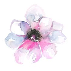 Anemone flower - love this as apart of a tattoo collection!