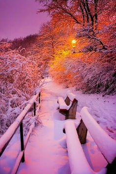 Winter love all cold weather Winter Szenen, Winter Magic, Winter Night, Winter Sunset, Winter Leaves, Winter Walk, Beautiful World, Beautiful Places, Beautiful Pictures