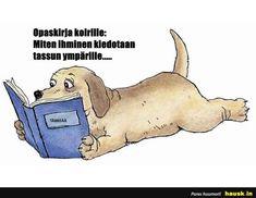 Dog Best Friend, Best Friends, Funny Pictures, Comics, Dogs, Life, Beat Friends, Fanny Pics, Bestfriends